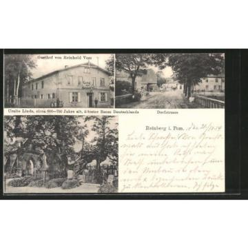 AK Reinberg, Uralte Linde, ältester Baum Deutschlands, Gasthof v. R. Voss, Dorf