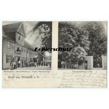 alte Ak, Drübeck Ilsenburg, Restaurant und Geschäfthshaus Pfannkuchen, Linde