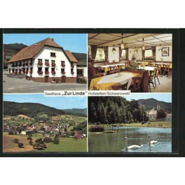 AK Hofstetten, Gasthaus zur Linde mit Gastraum, Panoramaansicht, Teichpartie