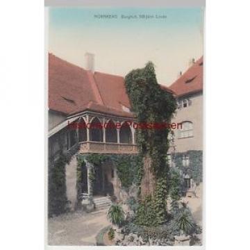 (87357) AK Nürnberg, Burghof m. 500-jähriger Linde, um 1910