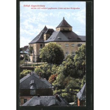 schöne AK Augustusburg, Schloss mit der verkehrt gepflanzten Linde