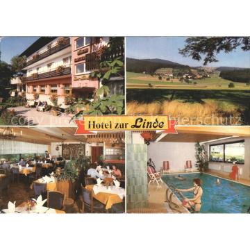 72369872 Althof Hotel Restaurant Pension Zur Linde Hallenbad Landschaft Bad Herr