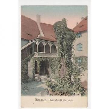 Germany, Nurnberg, Burghof, 500 jahr Linde Postcard, B048