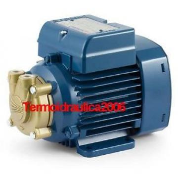 Electric Water Pump with peripheral impeller PVm55 0,5Hp 240V Pedrollo Z1