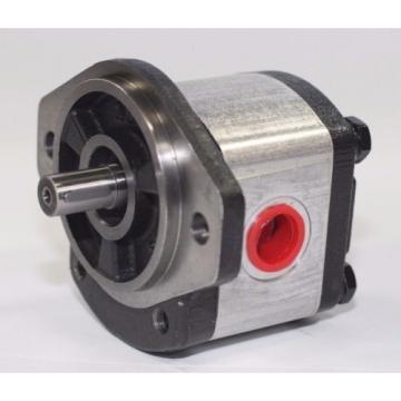 Hydraulic Gear Pump 1PN055CG1P13C3CNXS