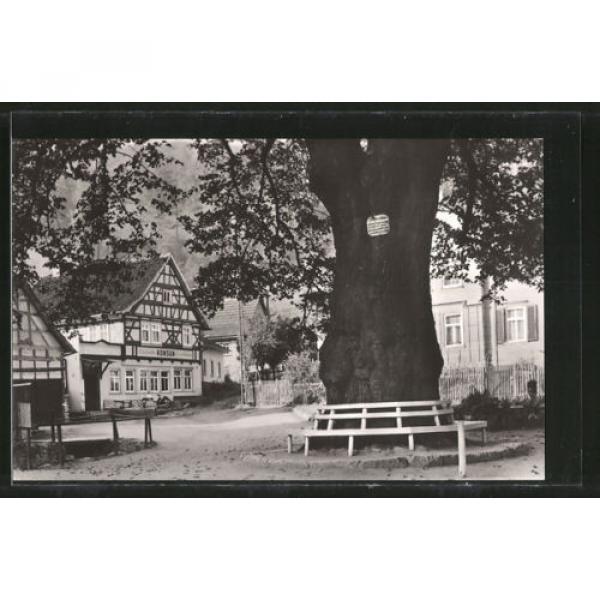 schöne AK Thal, Partie an der 600-jährigen Linde #1 image