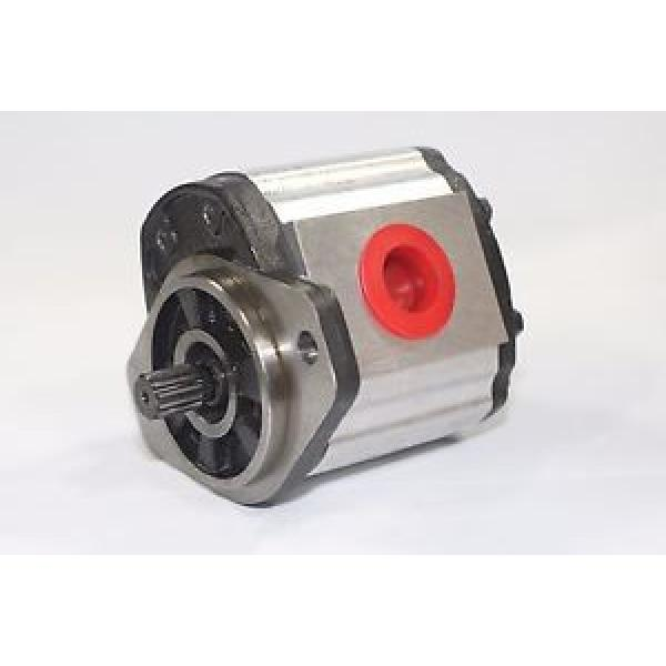 Hydraulic Gear Pump 1PN082AG1S13E3CNXS 8.2 cm³/rev  250 Bar Pressure Rating #1 image