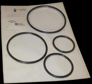 NEW Mexico France MANNESMANN REXROTH  00311341  O-RING KIT