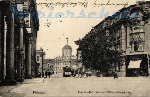 AK Potsdam, Humboldt-Strasse mit Bittschriften-Linde, 1915, 11/03