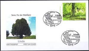 BRD 2013: Blühende Linde! FDC der selbstklebenden Wohlfahrtmarke Nr. 2986! 159