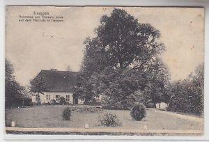 68639 Ak Trempen Aennchen von Tharau´s Linde auf dem Pfarrhofe 1928