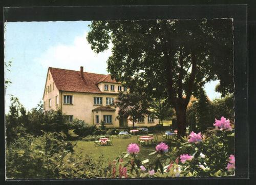 alte AK Steinbergen, Hotel zur Linde aus dem Garten gesehen