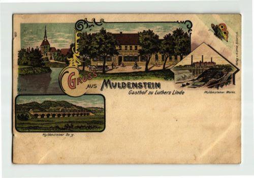 +++ 1907 Deutschland Gruss aus MULDENSTEIN Gasthof zu Luthers Linde AK