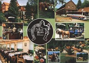 72333079 Osterode Harz Pony-Hotel Zur Linde Osterode am Harz