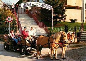 72907323 Riefensbeek-Kamschlacken Pony Hotel Zur Linde Osterode am Harz