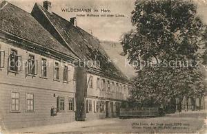 42986012 Wildemann Hotel Rathaus mit alter Linde Wildemann