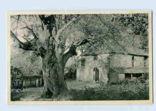 K136-3045/ Bispingen Kirche und Linde Baum  AK 1937