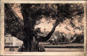 Ak Schwabach in Mittelfranken Bayern, Alte Linde - 1686636