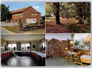 51405269 - Tinnen Gasthaus zur Linde
