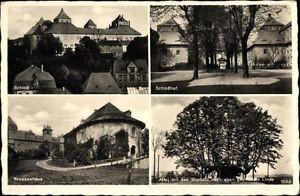 Ak Augustusburg im Erzgebirge, Schloss, Schlosshof, Brunnenhaus, Linde - 1584536