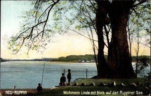 Ak Neuruppin in Brandenburg, Wichmann Linde mit Blick auf den... - 1595018