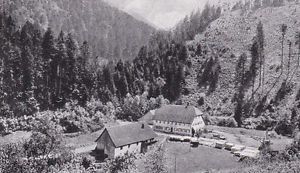 Oberprechtal - Gasthaus zur Linde - Ortsansicht - um 1950 oder früher ?