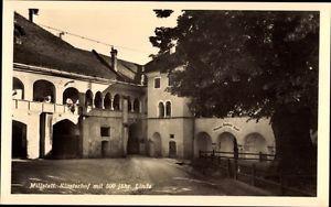 Ak Millstatt am See Kärnten, Klosterhof mit 500 jähr. Linde - 1018440