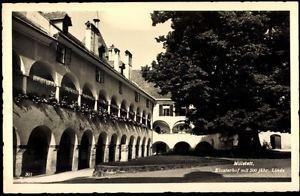 Ak Millstatt Kärnten, Klosterhof mit 500 jähriger Linde - 455845