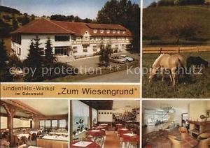72453609 Winkel Odenwald Restaurant Cafe Zum Wiesengrund Gastraeume Pferde Linde