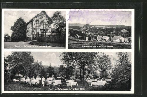 AK Nordhausen-Steigerthal, Gast u. Kaffeehaus zur grünen Linde mit Garten, Pano
