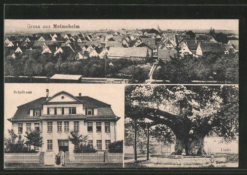 alte AK Meimsheim, Linde, Schulhaus, Ortspanorama