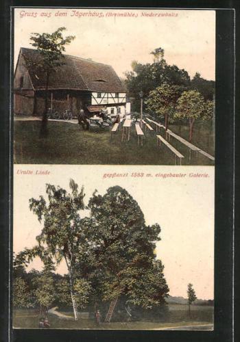 schöne AK Niederzwönitz, Gasthaus Jägerhaus, Bretmühle, Uralte Linde 1909