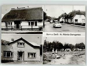 51918167 - Born , Darss Gasthaus Zur Linde Zeltplatz Tourist Siedlung Preissenku