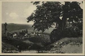 40926823 Kyllburg Rheinland-Pfalz Kyllburg Stiftsberg Wilsecker Linde * Kyllburg