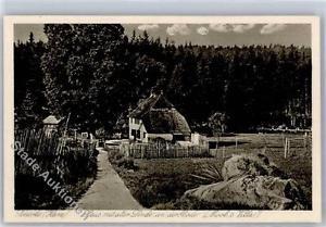 51292635 - Schierke am Brocken Haus mit alter Linde Mooks Villa Preissenkung
