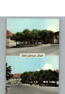 31162397 Effeltrich Gasthaus zur Linde Effeltrich
