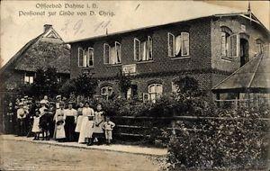 Ak Dahme in Holstein, Pensionat zur Linde, Inh. D. Ehrig, Besucher - 1559771