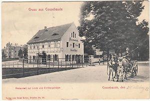 AK DRESDEN Cossebaude 1912 Restaurant zur Linde mit Eselsfuhrwerk   ( 44