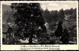 Ak Bad Thal Ruhla Thüringer Wald, Die 600 jh. Linde - 824929