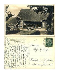 Postkarte22269 - Schwarzwald - Bernau - Pension und Gasthaus zur Linde - Menzens