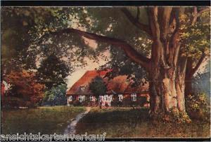 164.719 Lüneburger Heide, Pfarrhaus mit 500 jähr. Linde in Bispingen