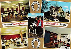"AK Riefensbeek Osterode Harz Pony-Hotel ""Zur Linde"""