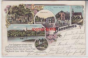 76270 Ak Lithographie Gruss aus Bornhöved Gasthof zur Linde, Waldkater usw. 1903