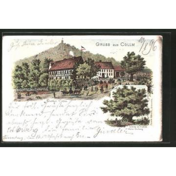 tolle Lithographie Wermsdorf, Gasthaus Collm, Linde 1896