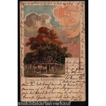 167.359 Annaberg, Linde auf dem Friedhof, sign. Hirschmann, Litho, gl1901