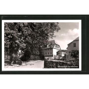 alte AK Barkhausen, Schullandheim mit alter Linde