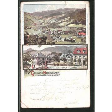 tolle Lithographie Nordrach, Totale des Ortes, Hotel Kuranstalt zur Linde 1899