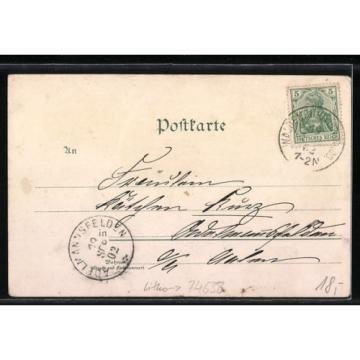 Lithographie Waldenburg, Fürstl. Schloß, Linde, Straßenpartie, Ortsansicht 1902