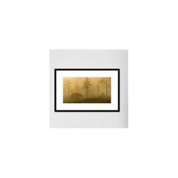 Global Gallery 'Morning Fog' by Svein Ove Linde Framed Photographic Print