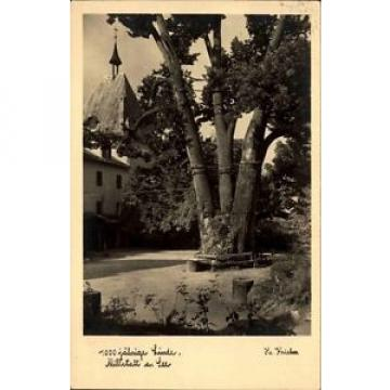 Millstatt am See Österreich Kärnten AK 1940 1000jährige Linde Baum Wahrzeichen